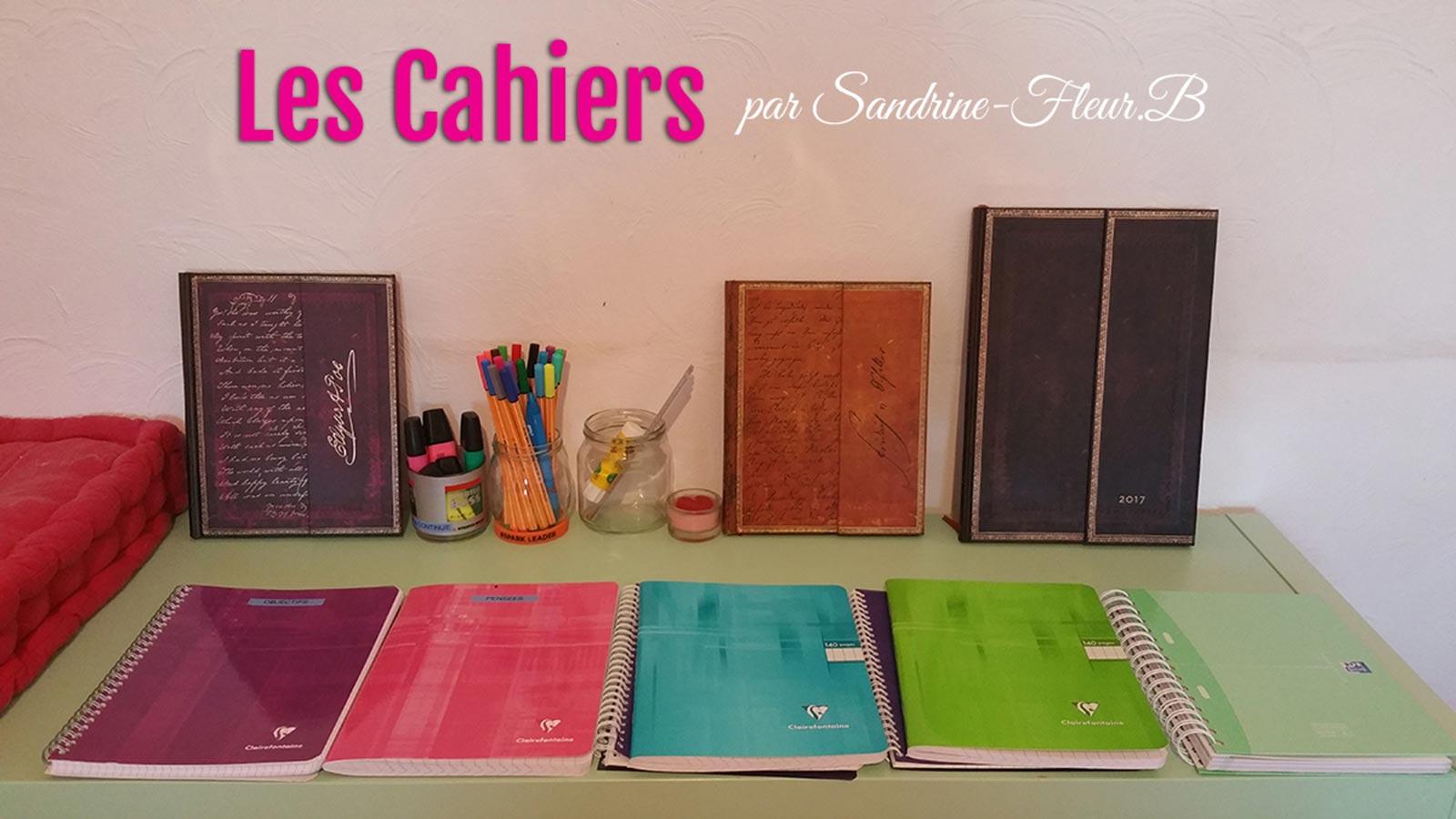 Les cahiers sandrine fleur b 2202201702