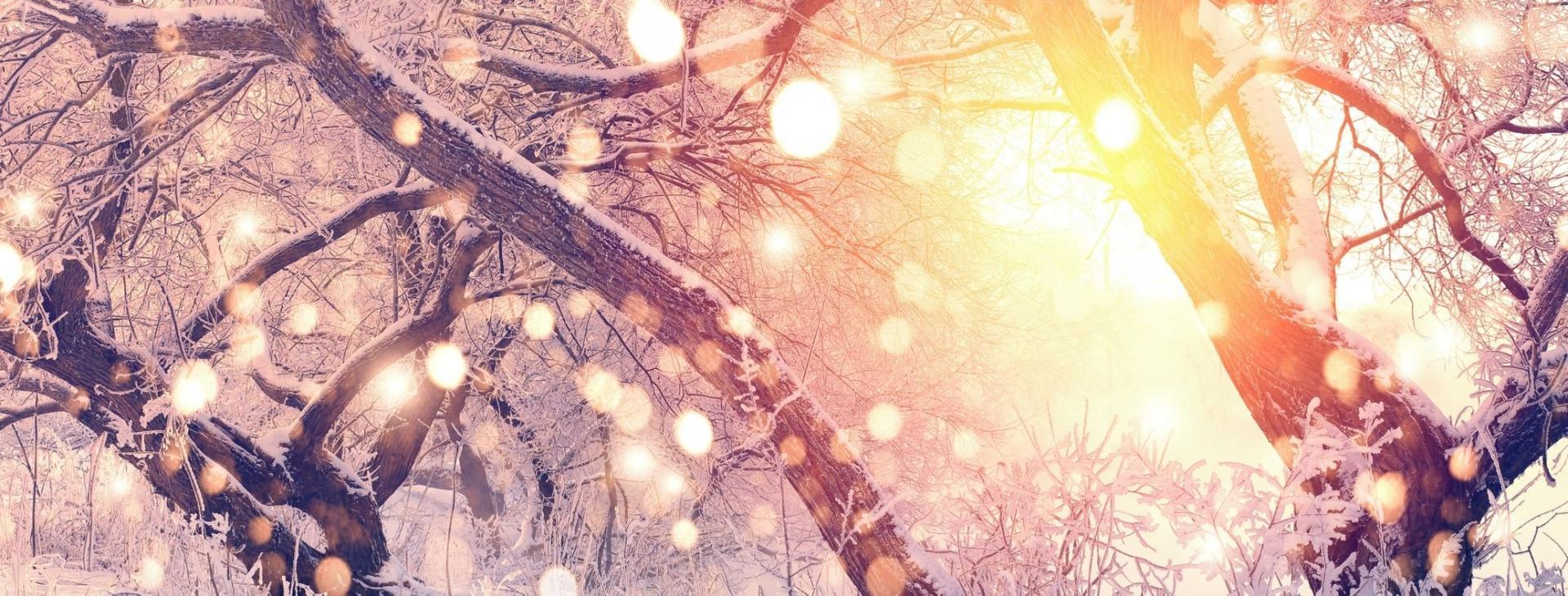 Bandeau hello winter 03