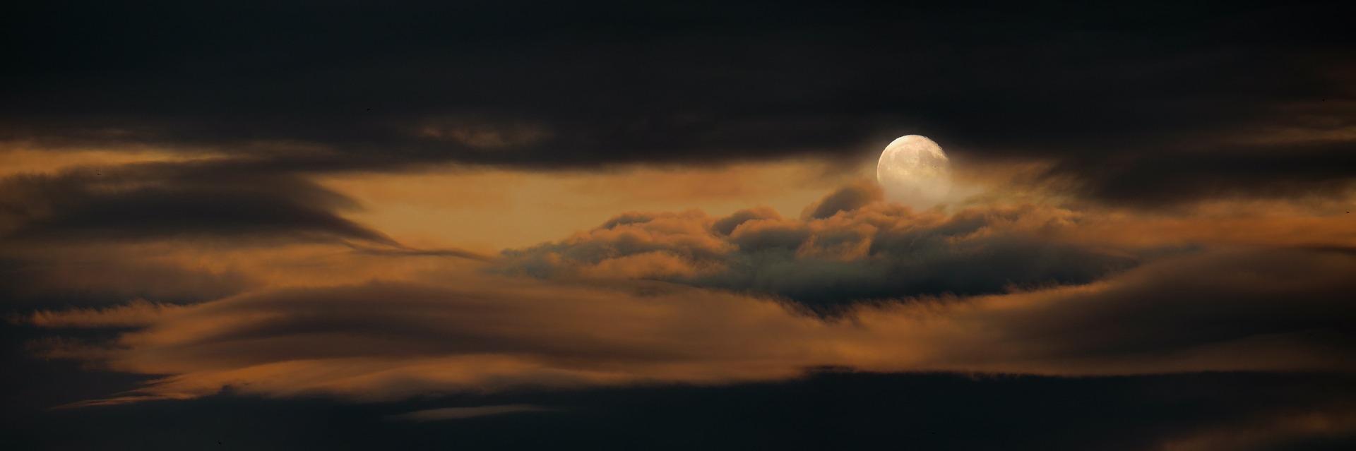 Lumieres de lune sandrine fleur b 02